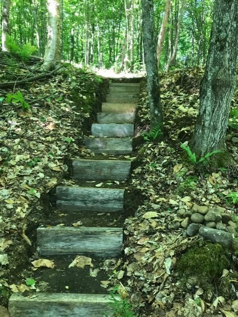 escalier à Louisette 12-06-18.jpg